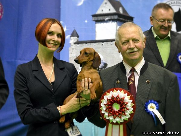 Best in Show (BIS) - BIS CAC Narva (Estonia), Saturday, 23 April 2016